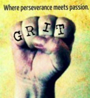 Perseverance and Passion in Sales